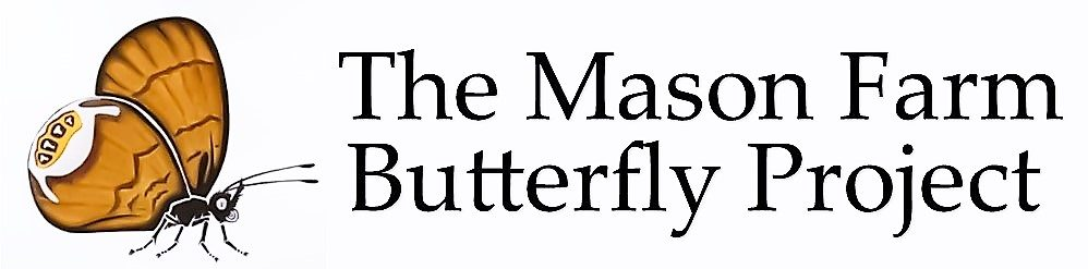 The Mason Farm Butterfly Project